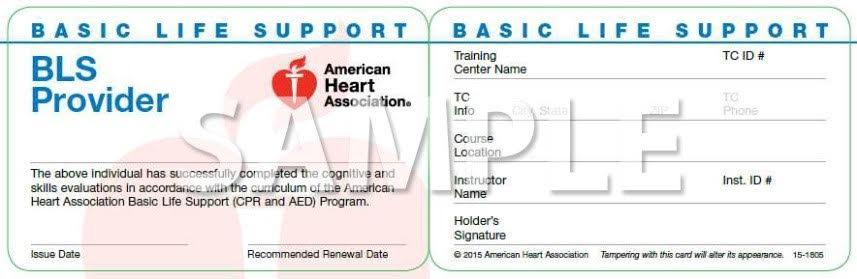 bls training provider